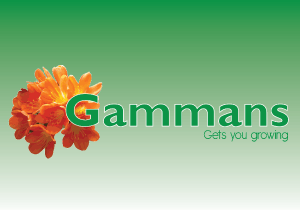 Gammans.co.nz
