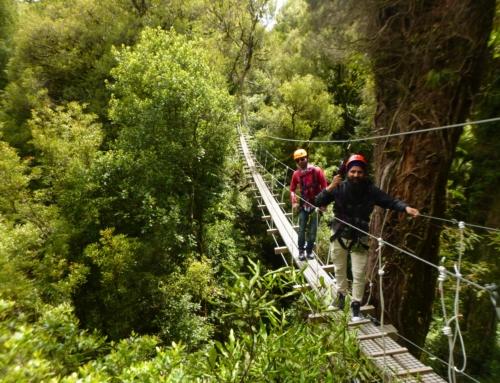 Loadscan enjoys thrilling ride through Rotorua Canopies